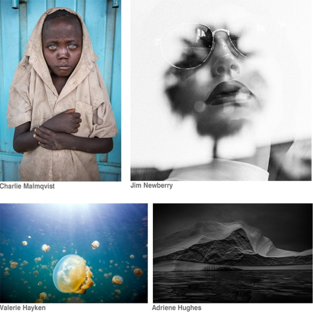 Untitled 2015 Winners