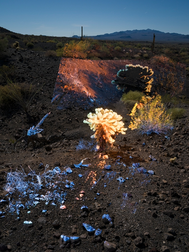 Pinacate_Projection_Cholla_800